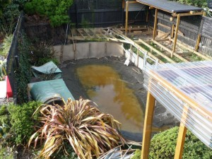 Para pool removed after earthquake